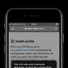 Instalar perfil de la beta pública de iOS 15